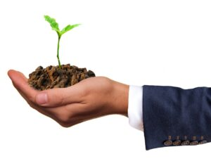 Read more about the article Et l'écologie dans tout cela ?